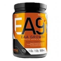 EA9 EAA Growth 30 Servicios