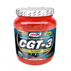 CGT 3