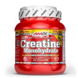 Creatina Monohidrato 500 g + 250 g Free